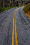 Camino Curvy con las líneas amarillas dobles en la más forrest Fotografía de archivo