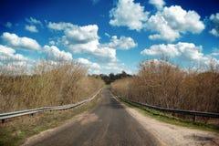 Camino dañado Foto de archivo libre de regalías