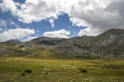 Camino de Ðœountain Imágenes de archivo libres de regalías