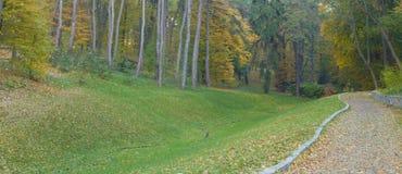Camino de bosque del otoño fotografía de archivo