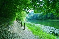Camino de bosque por el lago Foto de archivo