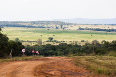 Camino de campo del Limpopo Foto de archivo