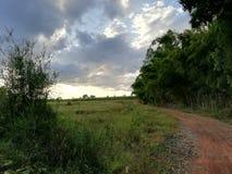 Camino de campo del campo de Tailandia Fotografía de archivo