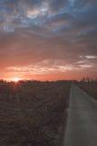 Camino de Contry Foto de archivo libre de regalías