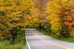 Camino de dos calles a través de un bosque en otoño imagen de archivo