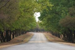 Camino de enrollamiento Imagen de archivo