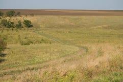 Camino de enrollamiento de la estepa Foto de archivo libre de regalías