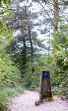 camino de fläck stolpe santiago Royaltyfria Bilder