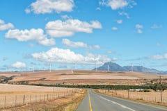 Camino de Genadendal a Caledon con el parque eólico en distancia Foto de archivo libre de regalías