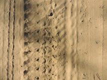 Camino de la arena Foto de archivo