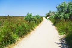 Camino de la arena a través de arbustos Fotos de archivo