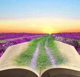 Camino de la biblia a la paz Imagen de archivo libre de regalías