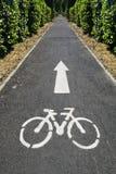Camino de la bici Foto de archivo libre de regalías