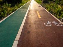 Camino de la bici en el parque para la forma de vida sana fotos de archivo libres de regalías