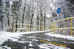 Camino de la bicicleta del invierno fotografía de archivo