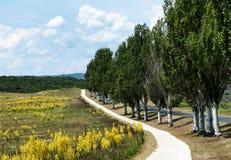 Camino de la bicicleta en la península de Tihany Fotografía de archivo
