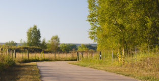 Camino de la bicicleta a través del campo del otoño fotografía de archivo libre de regalías