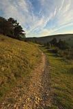 Camino de la colina Foto de archivo libre de regalías