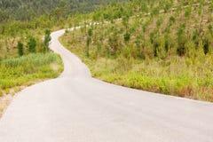 Camino de la colina Fotografía de archivo