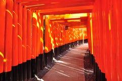 Camino de la curva del torii Fotografía de archivo libre de regalías