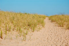 Camino de la duna - horizontal Imagen de archivo libre de regalías