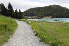 Camino de la grava al sitio para acampar de Tekapo del lago Imágenes de archivo libres de regalías