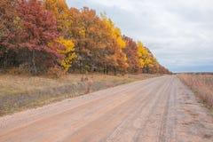 Camino de la grava del país en Wisconsin rural con los árboles del otoño del color de la caída - amarillos, anaranjados, rojos, y fotos de archivo