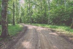 camino de la grava en el bosque del árbol de abedul - mirada de la película del vintage Foto de archivo