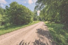 camino de la grava en el bosque del árbol de abedul - mirada de la película del vintage Fotografía de archivo libre de regalías