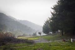 Camino de la montaña Fotos de archivo