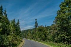 Camino de la montaña Foto de archivo libre de regalías
