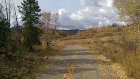 Camino de la montaña de Colorado Foto de archivo