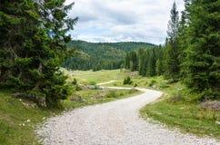 Camino de la montaña de la bobina Imagen de archivo