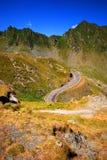 Camino de la montaña del enrollamiento fotografía de archivo libre de regalías