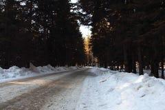 Camino de la montaña del invierno Imágenes de archivo libres de regalías