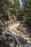 Camino de la montaña del peregrinaje al monasterio de Tiger Nest Taktshang, Bhután Imagenes de archivo