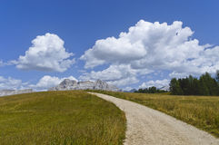 Camino de la montaña, dolomías Foto de archivo