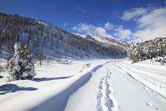 Camino de la montaña en el invierno Fotos de archivo libres de regalías