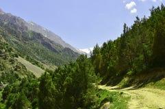 Camino de la montaña, garganta de Galuyan, Kirguistán Foto de archivo libre de regalías