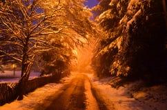 Camino de la montaña a lo largo del bosque en la estación del invierno Fotografía de archivo libre de regalías