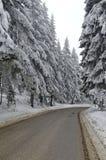 Camino de la montaña por el bosque en invierno, montaña de Rila, Borovetz Fotografía de archivo libre de regalías