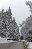 Camino de la montaña por el bosque en invierno. Montaña de Rila, Borovetz Foto de archivo libre de regalías