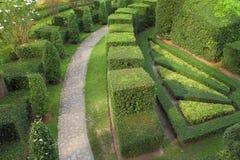 Camino de la naturaleza a través en el jardín Imágenes de archivo libres de regalías