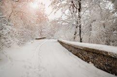 Camino de la nieve Fotos de archivo libres de regalías