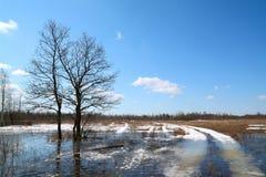 Camino de la nieve fotografía de archivo libre de regalías