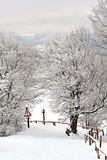 Camino de la nieve Imagen de archivo libre de regalías