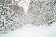 Camino de la nieve Foto de archivo libre de regalías