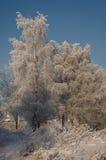 Camino de la nieve del claro de la quitanieves Imagenes de archivo
