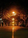 Camino de la noche Imagen de archivo libre de regalías