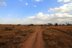 Camino de la pista de tierra en Serengeti Imagen de archivo